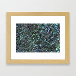 Abalone Shell | Paua Shell | Natural Framed Art Print