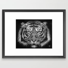 Tiger in Charcoal. Framed Art Print