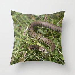 Seymour Snake Throw Pillow