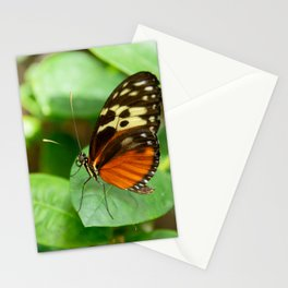 Tiger Longwing-4 Stationery Cards
