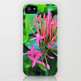It's Pink iPhone Case
