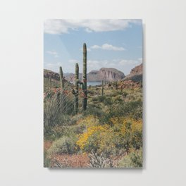 Arizona Spring Metal Print