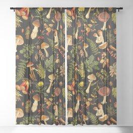 Vintage & Shabby Chic - Autumn Harvest Black Sheer Curtain