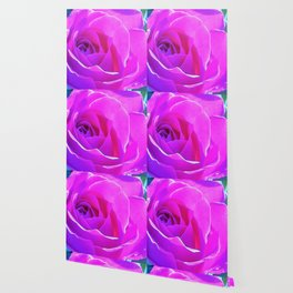 Pretty Round Pink and Purple Rose on Blue Painting Wallpaper