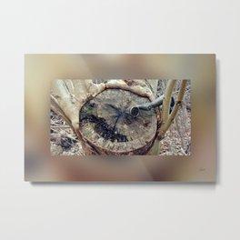 Talking Machine Silent Stories - Border Blur - 3a Metal Print