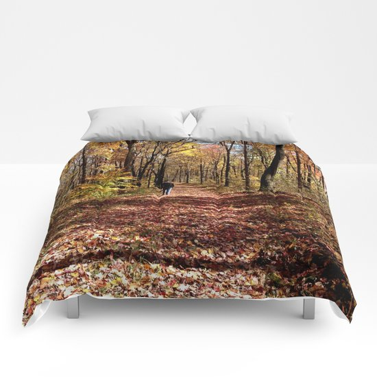 Autumn Walk Comforters