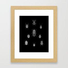 Beautiful Bugs Black Framed Art Print