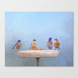 Bluebird Storm Canvas Print