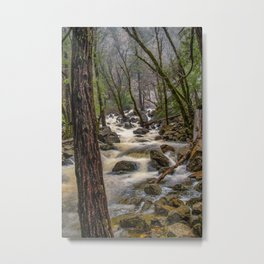 Bridalveil Creek, Yosemite National Park is swollen with snowmelt runoff on an early Spring morning Metal Print