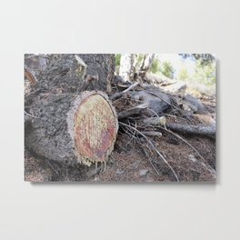 Bleeding Tree Metal Print