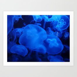Blue Jellyfish I Art Print