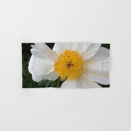White Beauty by Teresa Thompson Hand & Bath Towel