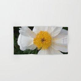White Beauty by Teresa Thompson Hand & Bath Towel