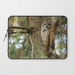 Beautiful Barred Owl Laptop Sleeve