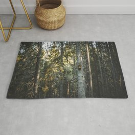 Latvian Forest || Spring time || Bird Cage || MadaraTravels Into The Wild. Rug