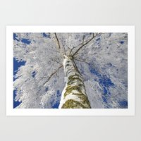 john snow Art Prints featuring Snow worlds by Tanja Riedel