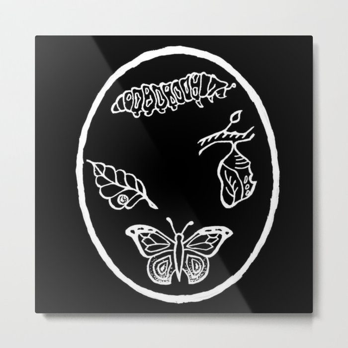 Butterfly Life Cycle Illustration Metal Print