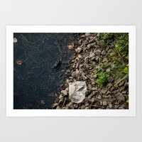 The Frog and the Trash Art Print