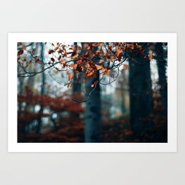 Hibernation Art Print
