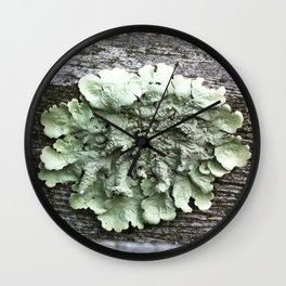 single lichen Wall Clock