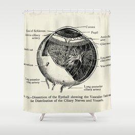 Vintage Anatomy The Human Eyeball Shower Curtain
