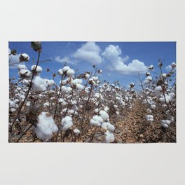 Cotton Field Rug