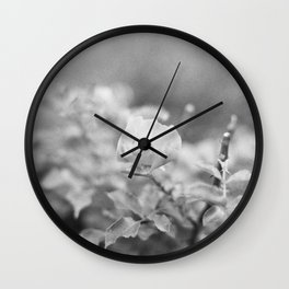Close to the rose Wall Clock