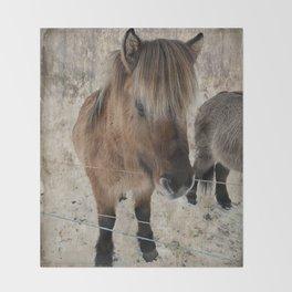snowy Icelandic horse Throw Blanket