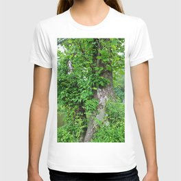 Quietly Quirky T-shirt