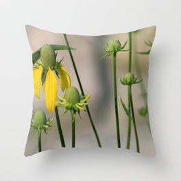 Mexican Hat Wildflowers in Horicon Marsh Throw Pillow