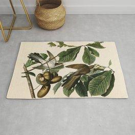 Yellow-billed Cuckoo - John James Audubon's Birds of America Print Rug