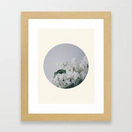 Comforting White Flowers Framed Art Print