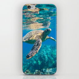 Large Sea Turtle, Marine Turtle, Chelonioidea, reptile animal swimming in clear and clean water iPhone Skin