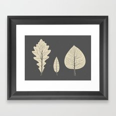 Tree-leaf Framed Art Print