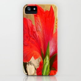Back Of A Red Hibiscus Flower Against Stone iPhone Case