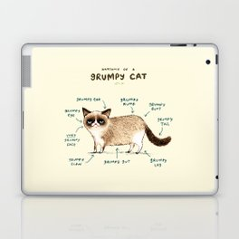 Anatomy of a Grumpy Kitty Laptop & iPad Skin