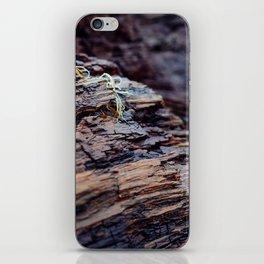 Wooden Texture iPhone Skin
