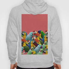 watermelon interior parrots design Hoody