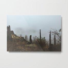 A Fire Past Metal Print
