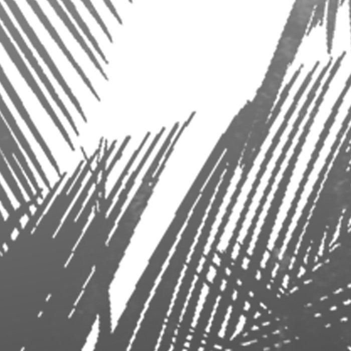 Palms BW Leggings