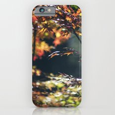 Autumn Window Slim Case iPhone 6s