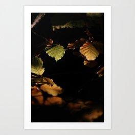 Leaves black hole Art Print