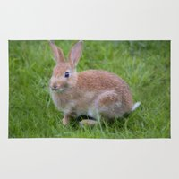 bunny Area & Throw Rugs featuring Bunny by davehare