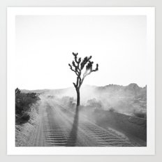 Rise out of the dust Art Print