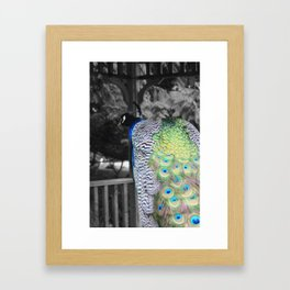 Fascinator Framed Art Print