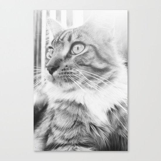 Chi Canvas Print
