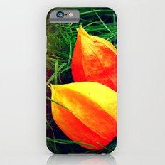 Lovely Lanterns  iPhone 6s Slim Case