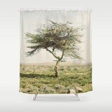 twist::kenya Shower Curtain
