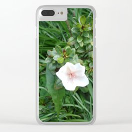 soft pink flower Clear iPhone Case