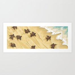 Turtles! Art Print